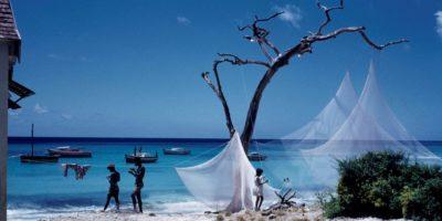 Caribbean Through a Lens   Blacknet UK